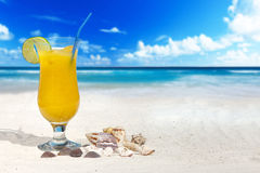 水果鸡尾酒和贝壳 免版税库存照片