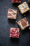 果仁巧克力叮咬用巧克力和蔓越桔 免版税库存图片