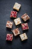 果仁巧克力叮咬用巧克力和蔓越桔 免版税库存照片