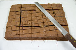 果仁巧克力蛋糕 图库摄影