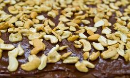 果仁巧克力蛋糕 库存照片