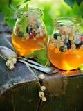 果冻用莓果 图库摄影