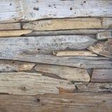 枝杈和海擦亮的木头片断 库存照片