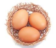 枝杈嵌套和一个组复活节彩蛋。 免版税库存照片