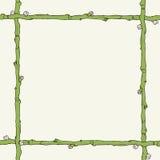 枝杈框架 图库摄影