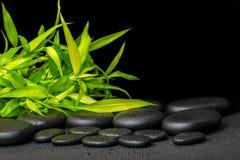 枝杈的温泉概念竹与在禅宗玄武岩石头的露水,关闭 免版税库存照片