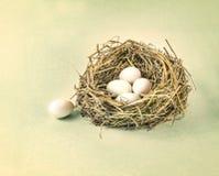 枝杈筑巢用白鸡蛋,减速火箭的葡萄酒颜色口气 库存图片
