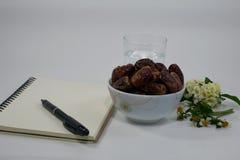 枣椰子花笔记本白色背景 免版税库存照片