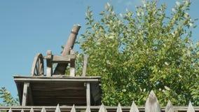 枪和在背景的绿色树木模型有蓝天的 股票录像