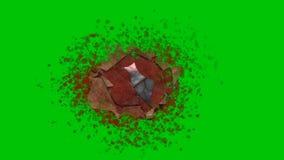 枪响与血液泼溅物的命中创伤在绿色屏幕背景 股票视频