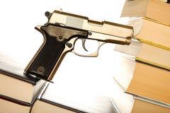 枪法律 库存照片