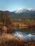 枫树岭,不列颠哥伦比亚省,加拿大风景  免版税图库摄影
