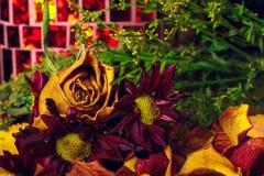 枯萎和烘干秋天上色花束 库存照片