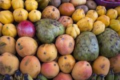 架子用在一个农厂市场上的果子在阿雷基帕,秘鲁 库存照片