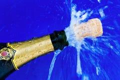 黄柏和香槟瓶 免版税图库摄影