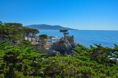 柏小山看法从17英里路的在加利福尼亚海岸 免版税图库摄影