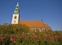 柏林教会玛丽s st 库存照片