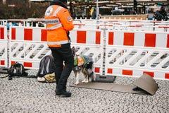 柏林,德国2018年2月15日:医疗救护车的救护车或雇员有狗或救助者的 人雇员  库存图片