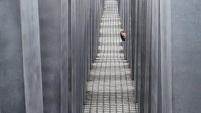 柏林- 2016年10月18日:丢失在纪念品对被谋杀的犹太人在柏林 免版税库存照片