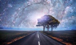 柏油路和偏僻的树在繁星之夜天空和银河下 美国航空航天局礼貌  免版税库存照片