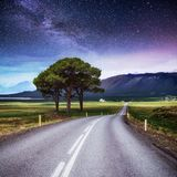 柏油路和偏僻的树在繁星之夜天空和银河下 图库摄影