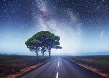 柏油路和偏僻的树在繁星之夜天空和银河下 库存图片