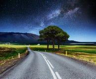 柏油路和偏僻的树在繁星之夜天空和银河下 免版税库存图片