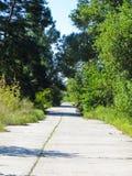 柏油路和夏天风景 库存图片