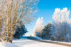 柏油路在冬天 免版税图库摄影