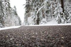 柏油路在多雪的冬天在美好的天 库存照片