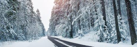 柏油路在多雪的冬天在美好的天 免版税库存照片