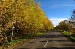 柏油路在秋天 免版税库存照片