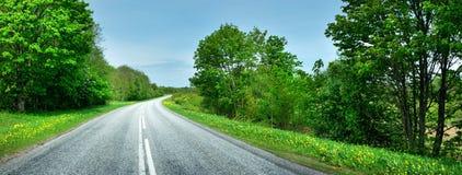 柏油路在美好的春日 库存照片