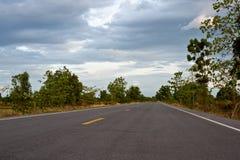 柏油路在自然的森林里 免版税库存图片