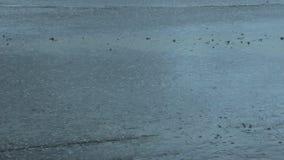 柏油路在雨中 影视素材