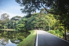 柏油路平安的看法在华美的树和湖之间的,在好日子 在清迈,泰国 库存图片
