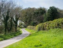 柏油路看法在美丽的绿色乡下 免版税库存照片