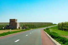 柏油路,并且与农夫的春天风景犁了领域和绿草 免版税库存照片