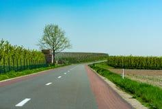 柏油路,并且与农夫的春天风景犁了领域和绿草 图库摄影