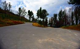 柏油路,绞的农村路看法  库存图片
