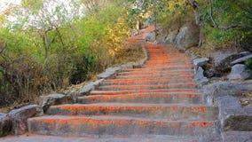 某些对Chamundi小山,迈索尔,印度的1000步 免版税库存图片