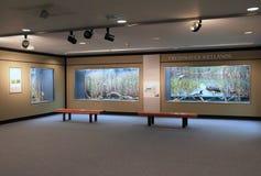 某人能坐和得知纽约州淡水沼泽地的平安的地方,状态博物馆,阿尔巴尼, 2016年 库存照片