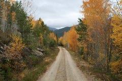 某处秋天在Telmark挪威 库存照片