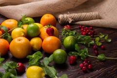 柑桔、新鲜薄荷和莓果 免版税库存图片