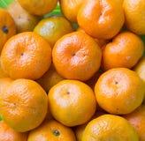 柑桔。 免版税图库摄影