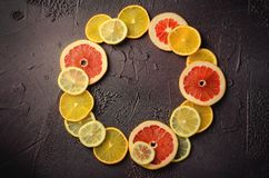 柑桔切片柠檬,桔子,在圈子形状的葡萄柚在黑暗的背景 免版税库存照片