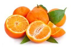 柑桔在白色的柑桔 免版税库存照片