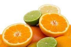 柑橘五颜六色的果子 库存图片