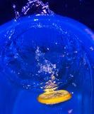 柑橘划分为的果子片式水 免版税库存图片