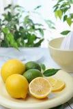 柑橘剥削者和新鲜的柠檬使用做柠檬水 免版税库存照片